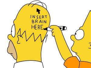 stupid_head.jpg