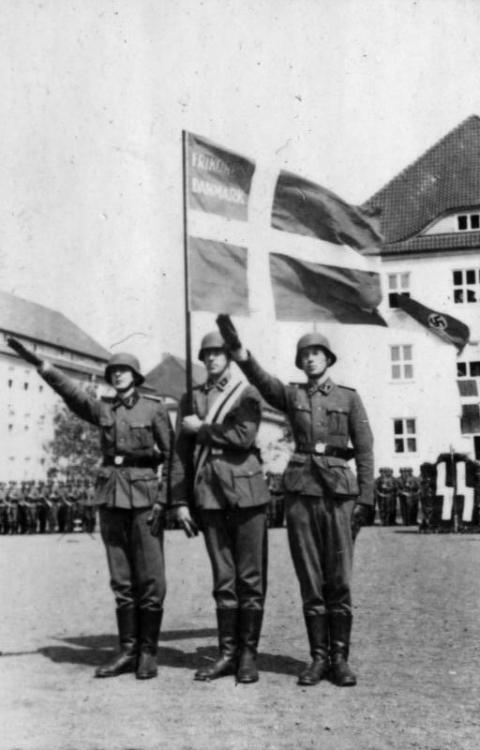Bundesarchiv_Bild_101III-Weill-096-27%2C_Deutschland%2C_Vereidigung_von_D%C3%A4nen.jpg